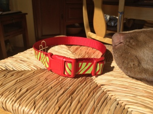 Grinch Holiday Dog Collar from Nifty Pup